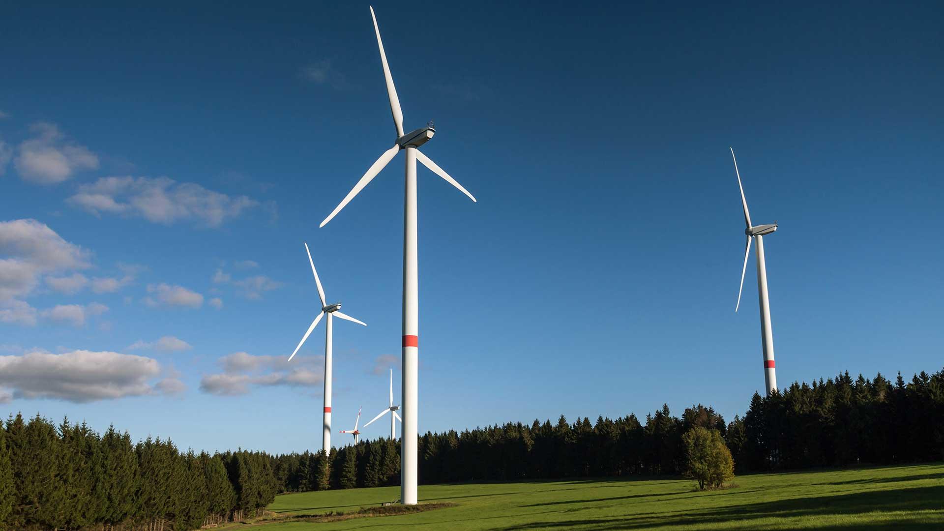 Nachhaltigkeit und regenerative Energien aus dem Haus Wallerstein