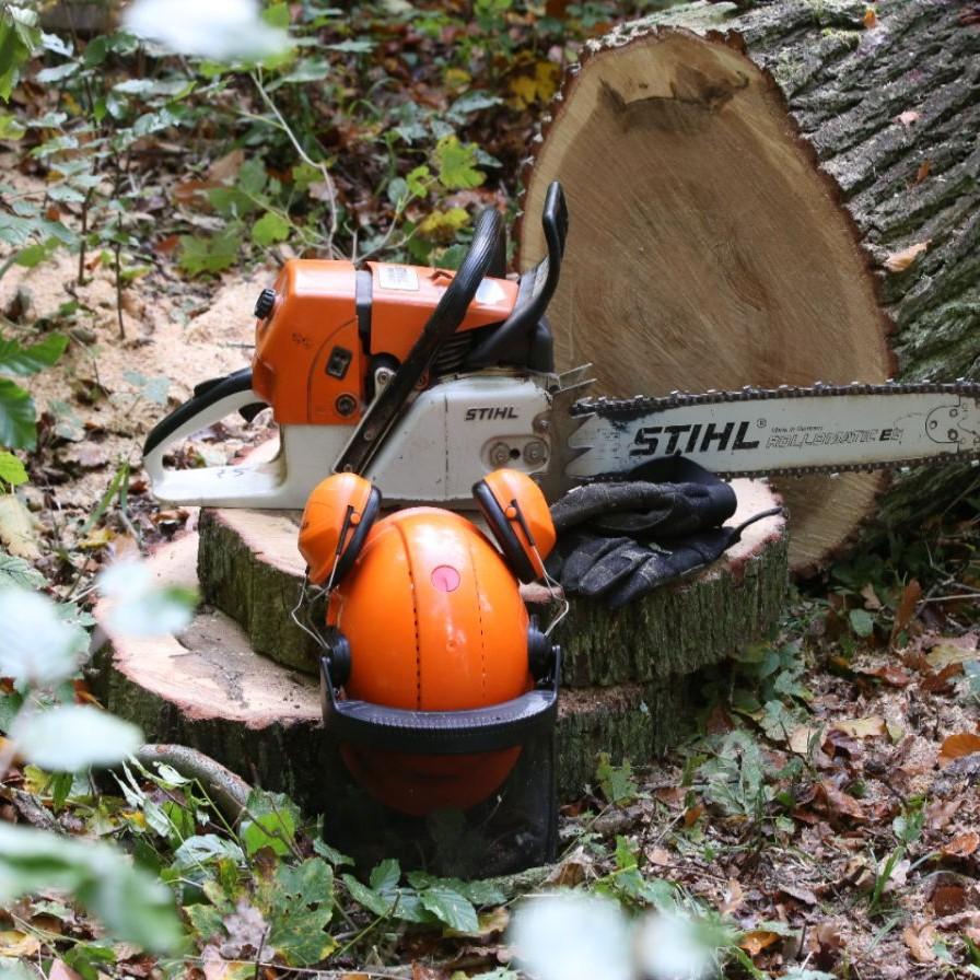 fürst wallerstein brennholz - laden sie unsere broschüre herunter