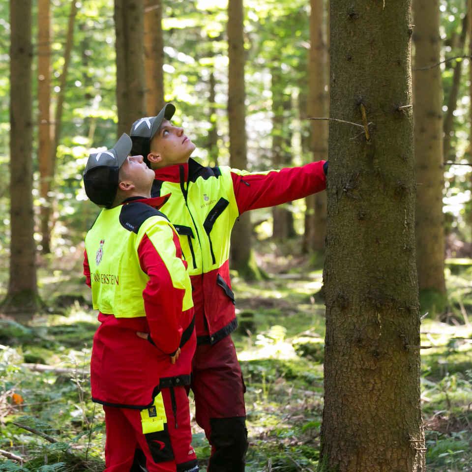 Ausbildung Zum Forstwirtin Fürst Wallerstein Forstbetriebe